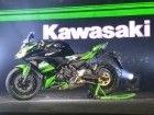 Kawasaki Ninja 650, Z650 and Z900 Launched In India