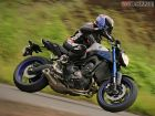 Yamaha MT-09: Introspection