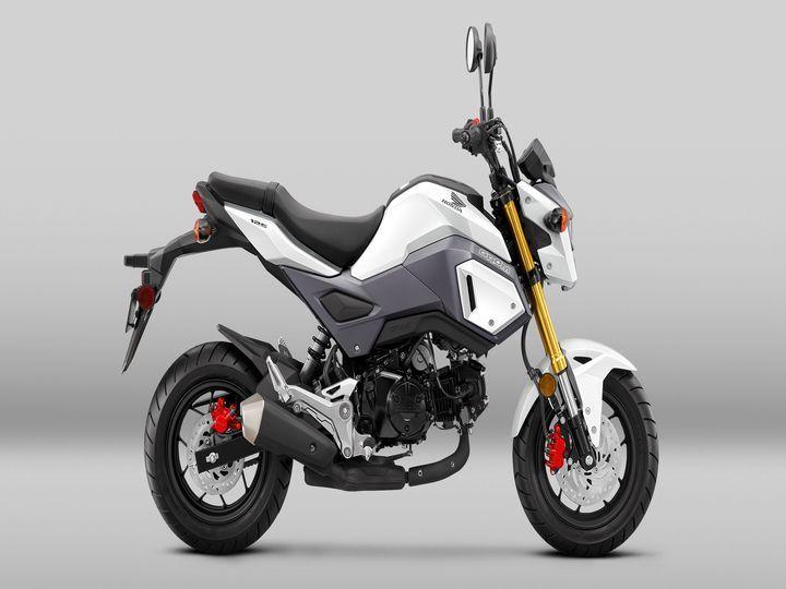Honda Grom Price >> Honda Grom Spotted Testing In India Zigwheels