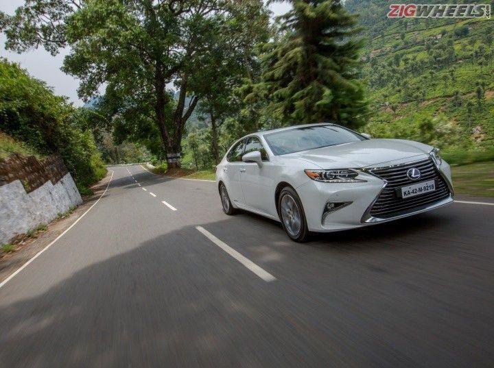 Lexus Plants Trees Across India Zigwheels