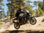 V-twin Power Meets Terrain-taming Dynamics: Harley's ADV Is Here!
