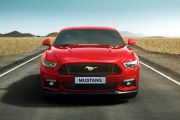 Front Image of Mustang