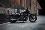 Right Side View of Iron 883